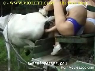 Alluring babe in bikini is fisting horse's asshole