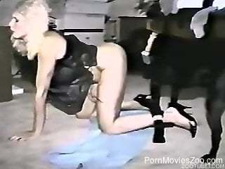 Horny females using the dog cock in sexual XXX scenes